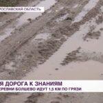 Дети из деревни под Ярославлем добираются до школы 1,5 километра по грязи